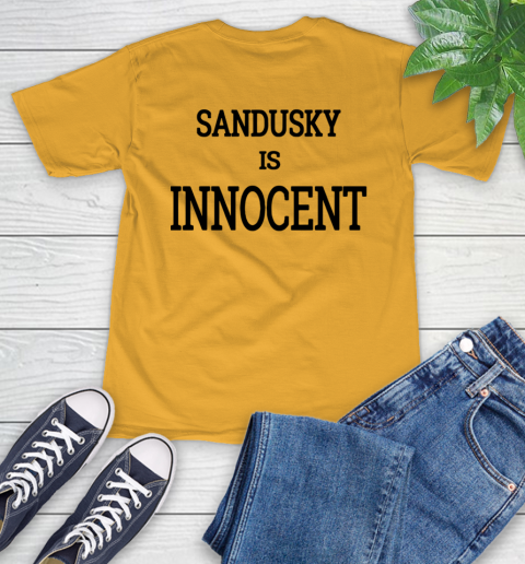 Penn state shirt controversy T-Shirt 14
