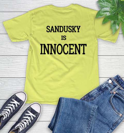 Penn state shirt controversy T-Shirt 20